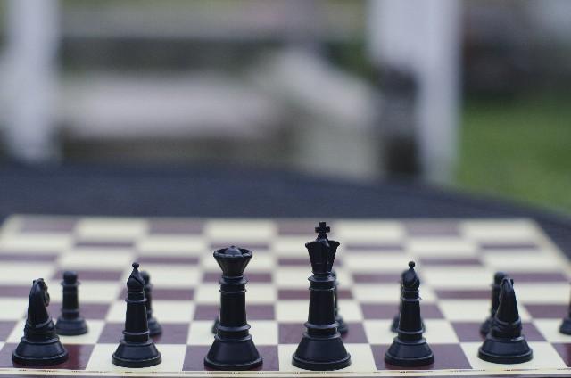 将棋とチェス比較!子供にピッタリな激しい知育ゲーム?!