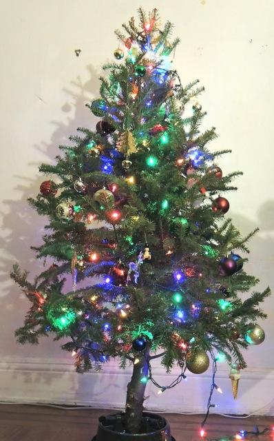 クリスマスツリーを生木で!子供と楽しむ扱い方&注意点